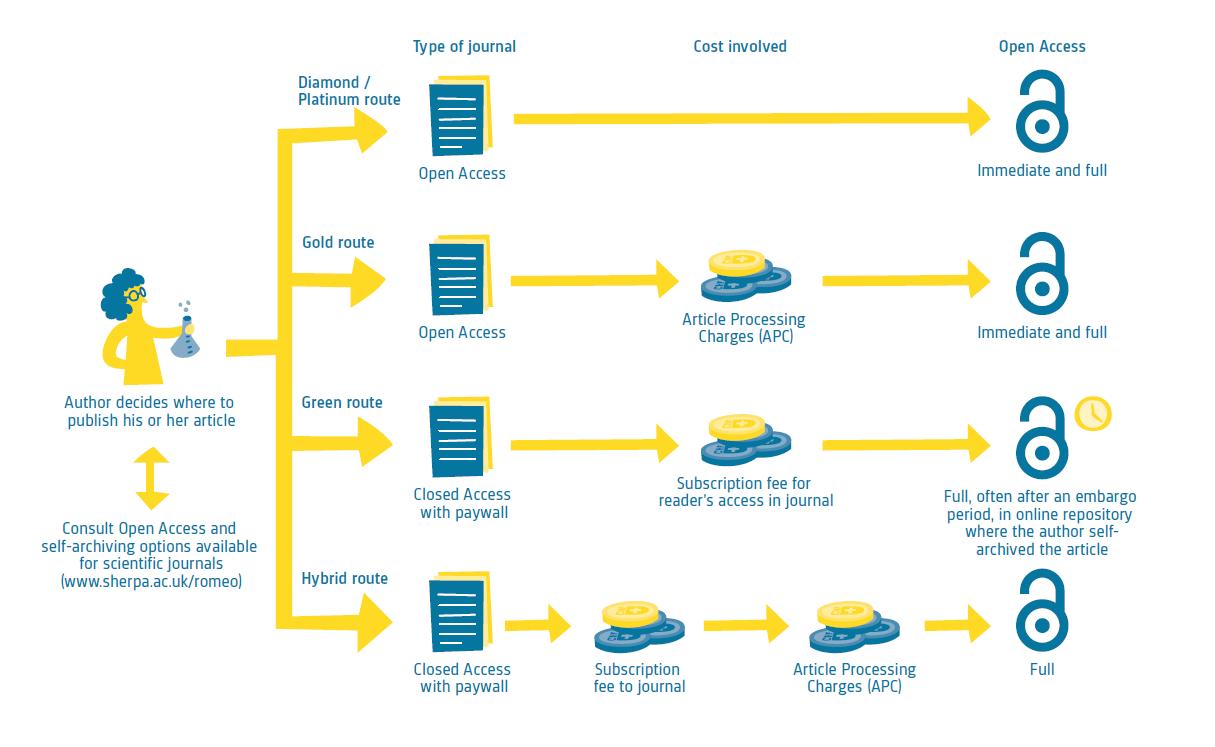 open access workflow